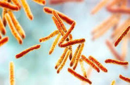Prevención y diagnóstico precoz de TBC en personas en exclusión social o en riesgo de estarlo